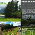 Learn about Hawaii and it´s culture