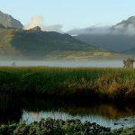 Explore & Restore Wildlife for Waterbirds with travel2change