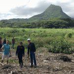 Volunteer in Hawaii with travel2change