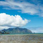 Enjoy Hawaiis nature while volunteering