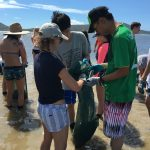 Get dirty while volunteering in Hawaii