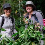 have fun and remove invasive plants