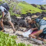 cleanup Kauai beaches